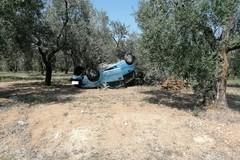 Grave incidente sulla sp231, auto finisce contro un ulivo