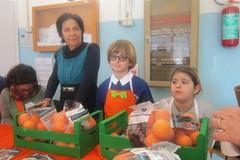 Alla scuola Papa Giovanni ritornano le arance contro il cancro