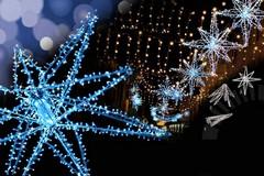 Addobbi e allestimenti natalizi, il Comune di Trani indice un concorso a premi