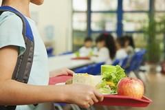 Refezione scolastica, prorogata la sospensione fino al 31 gennaio