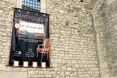 «Revocate il patrocinio a L'Antiquaria»