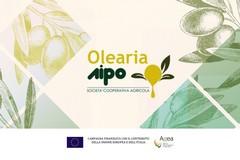 Attività formative Olearia AIPO, ecco come partecipare