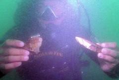 Trovato ordigno bellico in mare