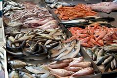 Pesce di dubbia provenienza in una pescheria di Trani: 1500 euro di multa e merce sequestrata