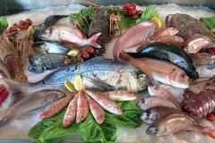 Gal Ponte Lama, disponibili 400mila euro da destinare al mercato ittico locale