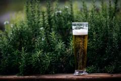 Birra artigianale, un vero e proprio boom in Italia