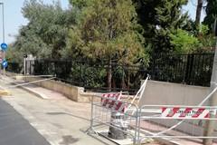 Cede un pezzo di asfalto in corrispondenza di un vecchio tombino: chiuso un tratto di pista ciclabile in via Sant'Annibale Maria di Francia