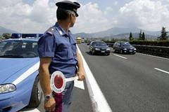 Blitz in autostrada: la polizia sequestra marijuana per un milione di euro