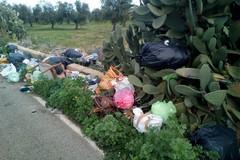 Abbandono dei rifiuti, Italia in Comune punta a guardie ambientali e sistemi di videosorveglianza