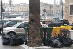 Musica nei locali oltre i limiti e rifiuti conferiti fuori orario: polizia locale di Trani in azione