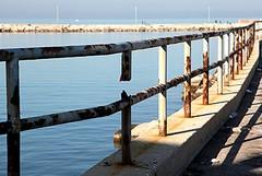 Transenna in mare: giovane tranese si tuffa e la recupera