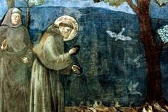 L'Omi Trani aderisce alla Carta di Assisi