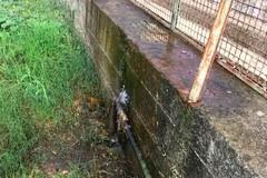 Tubo rotto allo Stadio comunale: l'acqua invade la curva