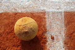 Tennis, allo Sporting inizia la Reina Cup