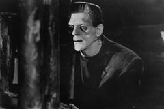 Frankenstein: la scienza ispirata al romanzo