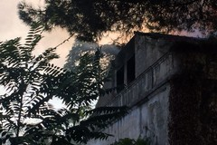Ancora fiamme nella villa di via Verdi: a fuoco le masserie