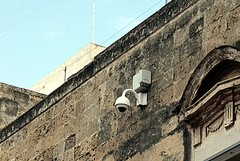Sicurezza nelle scuole, Paolillo: «Telecamere»