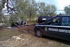 La vigilanza campestre scopre due auto rubate nelle campagne di Trani
