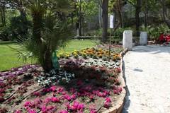 Le scuole Rocca-Bovio-Palumbo e Baldassarre di Trani per il Fai il 18 ed il 19 maggio