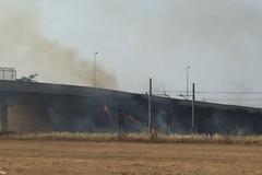 A fuoco le sterpaglie lungo il ponte di via Andria: disagi alla circolazione