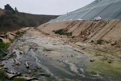 Impianti pubblici rifiuti, Mennea: «Anche Trani non ha condiviso alcun piano regionale»