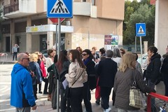 Addio Carlotta: il quartiere Pozzo Piano ricorda la gatta uccisa a dicembre