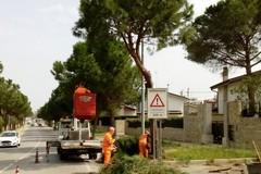 Interventi nel quartiere Turrisana, il Comitato ringrazia l'amministrazione