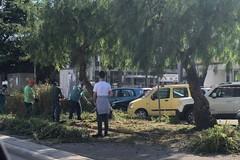 Cambio look per l'ospedale di Trani in vista della visita del presidente Emiliano