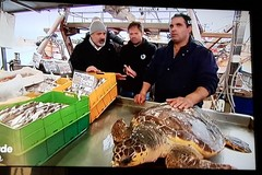 Trani e la pesca protagoniste  nella trasmissione LineaVerde su Rai1