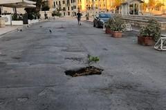 """Buca stradale come fioriera: singolare """"protesta"""" sul porto di Trani"""
