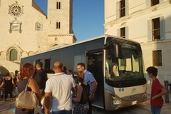 Autobus Stp, il presidente Fortunato garantisce mezzi più puliti