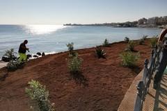 Restyling sul lungomare Chiarelli: creata una estesa aiuola-giardino
