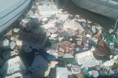 Tappeto di rifiuti alla Darsena di Trani: colpa del vento o dell'inciviltà?