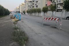 Sono tornate: in via Borsellino transennata una nuova buca al centro della carreggiata