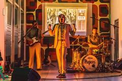 I Paipers: ecco la musica che vi porterà nella magica atmosfera degli anni '60
