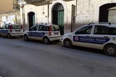 Sventato un furto in un'azienda di prodotti agricoli: salvato bottino da 100mila euro