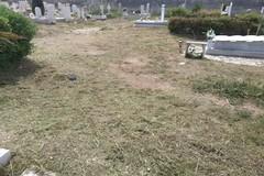 Rimossa erba alta e vegetazione incolta del campo nel Cimitero di Trani