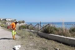 Costa, in corso lavori di bonifica in diverse spiagge di Trani