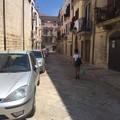 Blatte in piazza Sant'Agostino, i residenti chiedono la disinfestazione
