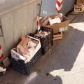 Materiale edilizio abbandonato vicino ai cassonetti dell'indifferenziata
