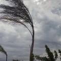 Fine settimana di maltempo a Trani, allerta gialla per vento forte