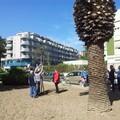 Festa dell'albero, in città saranno piantate 120 piantine