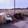 Capirro, terreni non bonificati che diventano il regno di rifiuti e insetti