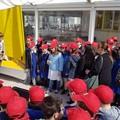 """Gli alunni della Petronelli celebrano la  """"Giornata del Mare """" con il rilascio di due tartarughe"""