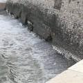 Raffiche di vento e mareggiate, il muraglione della Villa comunale perde pezzi