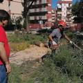 Pinetina di via Andria, al via la ripresa dei lavori dopo il lockdown