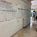 Elezioni 2020, alta affluenza a Trani. Seggi aperti fino alle 15