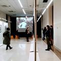 """Prorogata fino a domenica la mostra """"Tina Modotti. Opere dalle Gallerie Bilderwelt """""""