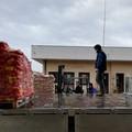 Emergenza sanitaria, consegnati oltre 200 pacchi alle famiglie in difficoltà