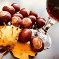 """""""Castagne, Vino & Brasciole """", a Trani i sapori dell'autunno e della tradizione"""